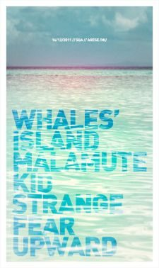 whales\' island release party